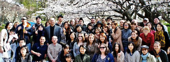 banner_Cherry_Blossom_Course_in_Fukuoka_Japan